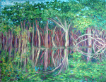 """Amazon Reflections: In the Jungle"""