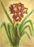 """Brown Cymbidiums 1"""