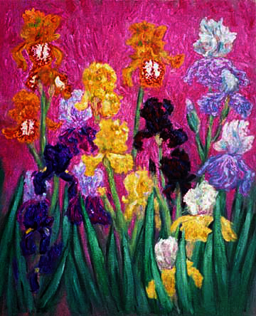 """El Nino Iris"" Iris Flower oil painting and prints by Pointillistic/Impressionist painter Paul Berenson"