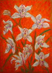 """Cymbidiums on an Orange Background"""