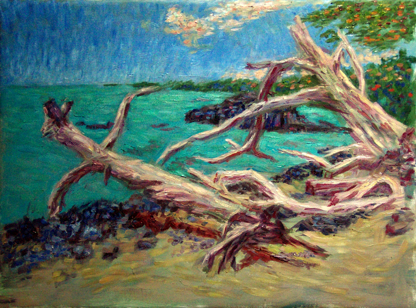 """Driftwood on the Beach, Puako, Hawaii"" Hawaii oil painting and prints by Pointillistic/Impressionist painter Paul Berenson"